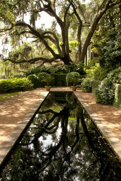 Beautiful Reflecting Pond in the Deep South #LandscapeDesign