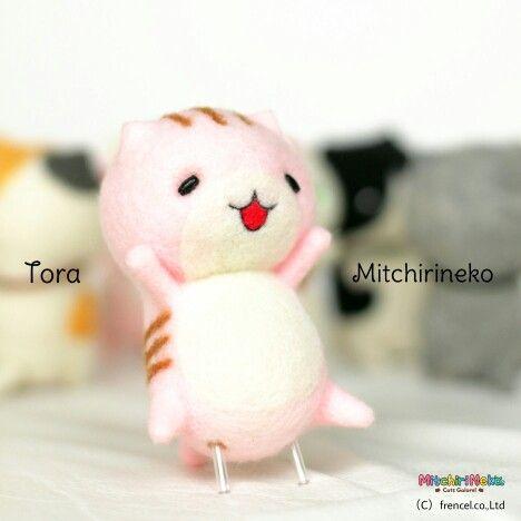 Mitchirineko,Tora,みっちりねこ,とら,虎