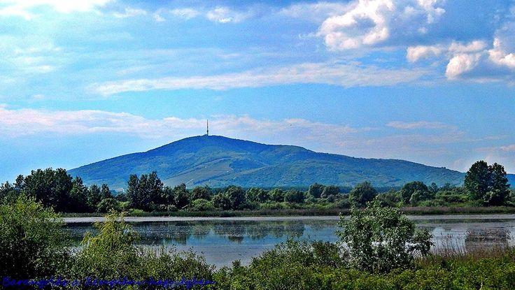 Tokaj A Nagy-Kopasz-hegy - Hungary