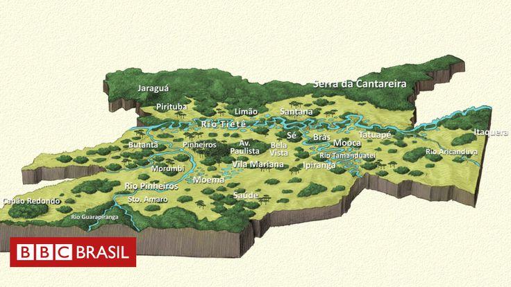 Morro onde a capital paulista surgiu tinha 'uma das melhores vistas' do país; a BBC Brasil elaborou um mapa inédito da flora paulistana original marcada pela diversidade de biomas.