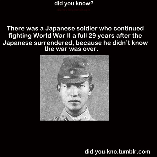 Ww2 Quotes Beauteous Japanese Fighting In World War 48 Quotes