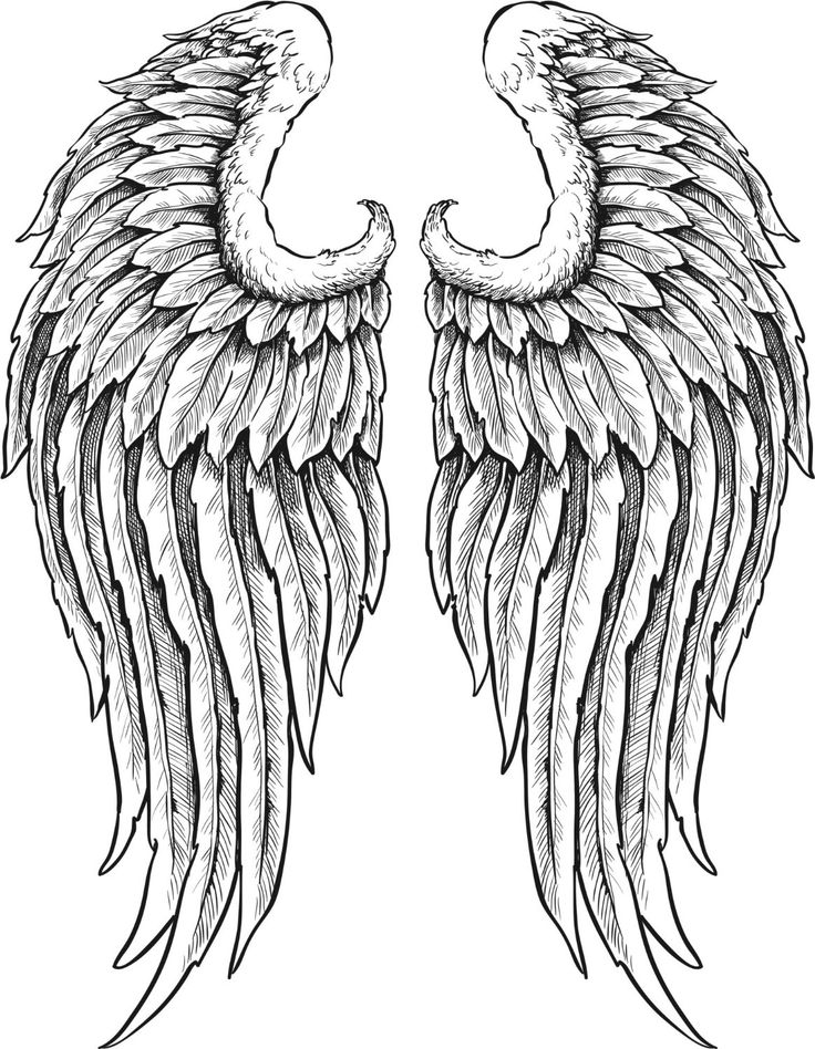 Heraldic Angel Black And White Wings Stock Vector