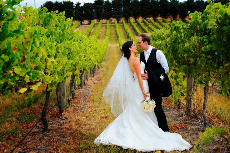 Wedding Photography Melbourne - Immerse Winery Con Tsioukis of Alex Pavlou Photography