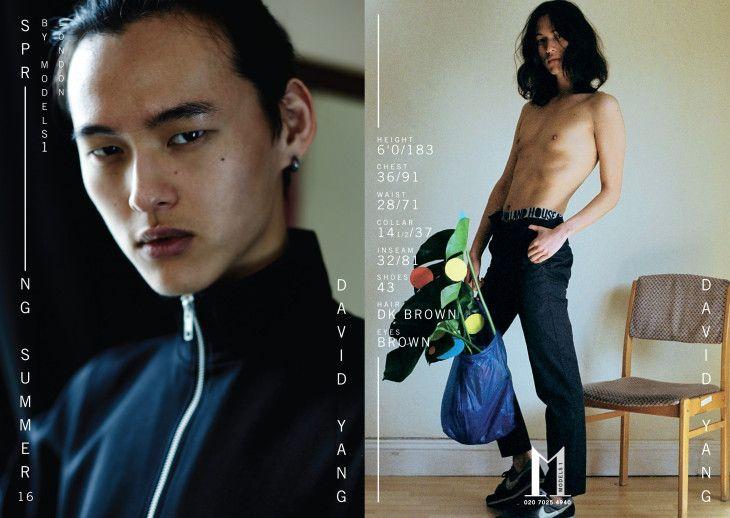 Resultado de imagem para david yang model