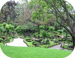 Japanese Garden  Bosque Colomos... GDL