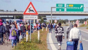 В Дании планируют изымать ценности у беженцев | Head News
