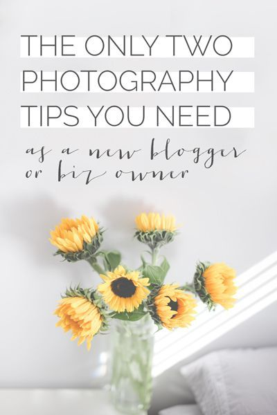 Easy photography tips for beginners when it comes to blogging, Instagram, or social media photos
