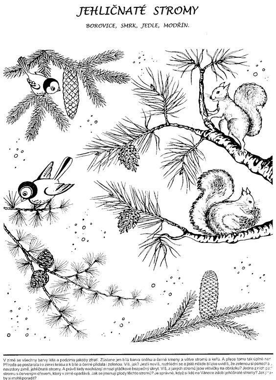Výsledek obrázku pro karty roční doby montessori