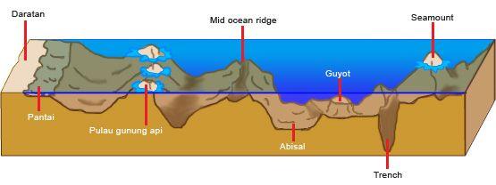 Lereng benua adalah bagian lereg dasar laut yang terletak antara paparan benua dan laut dalam.