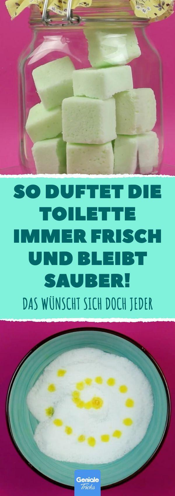 So einfach machst du dir deine eigenen Tabs für eine saubere Toilette #wc #rein
