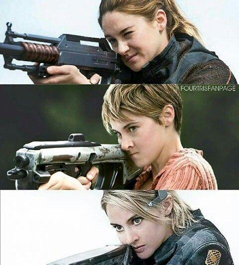 Divergent History | Instagram @thedivergendseriespolan