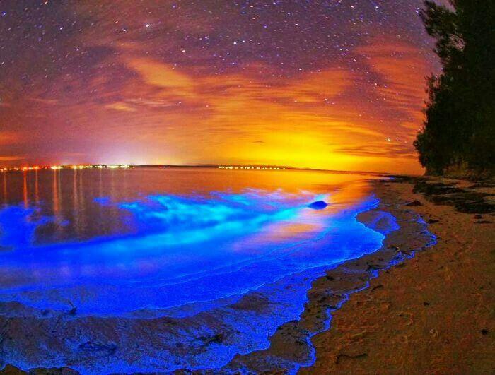 Mar de las estrellas, Isla Vaadhoo, Maldivas.