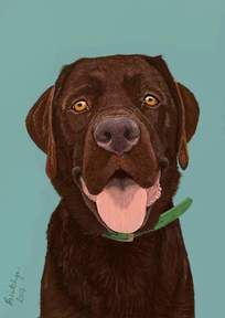 Labrador retriever dog portrait - digital art created by Paintchya.com , digital paintings start from $35 for an A6 image, order paintchya@gmail.com or via etsy:  etsy.com/ie/shop/Paintchya