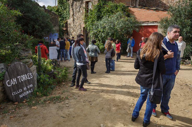 Celler Can Torres, elaborador de vino ecológico de Sant Climent Sescebes (Girona), en un entorno natural incluido en la Red Natura 2000, mostró su actividad a personas que trabajan con banca ética. La bodega es cliente de Triodos Bank, que le ha concedido financiación para complementar próximamente su actividad agrícola con turismo rural.