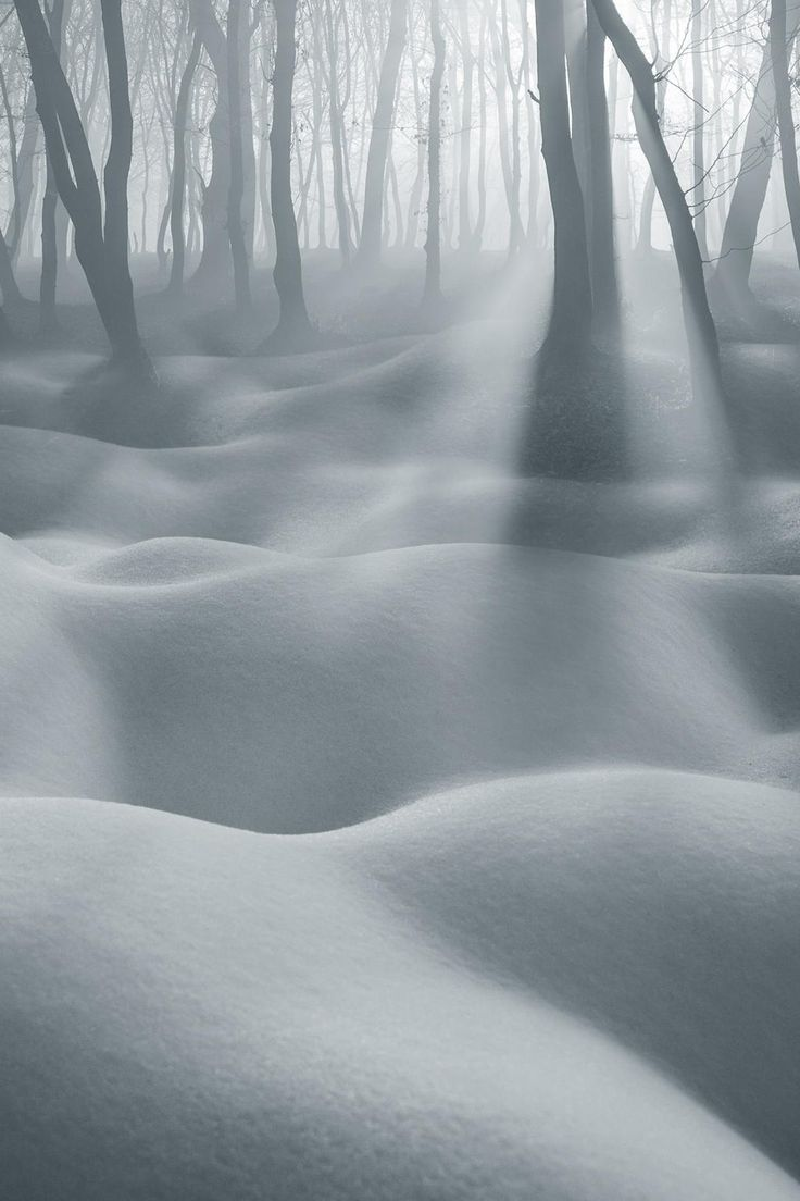 Dune IV by Adrian Borda via 500px.