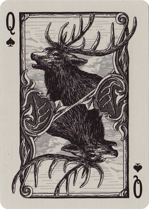 Bicycle® Frontier Playing Cards