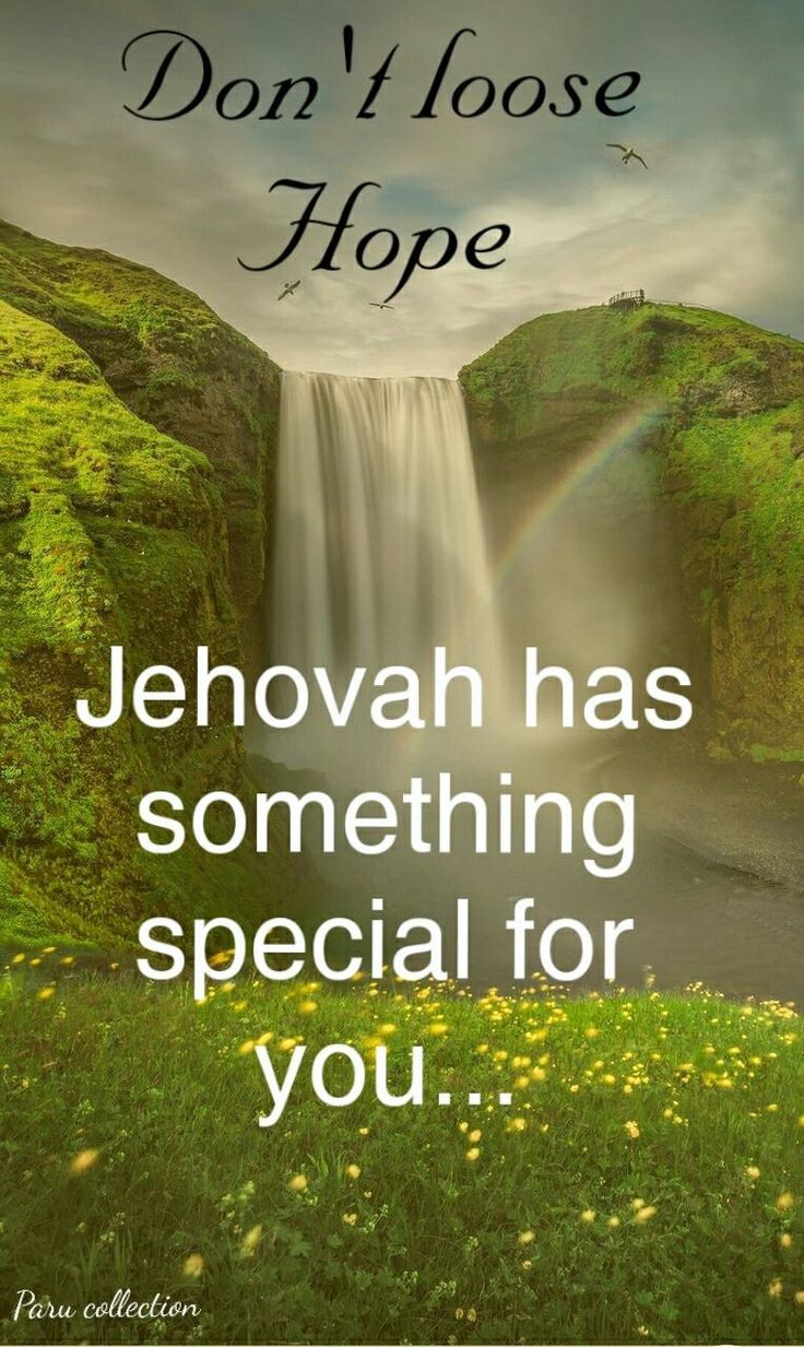 Don't Lose Hope Jehovah Has Something Special For You.