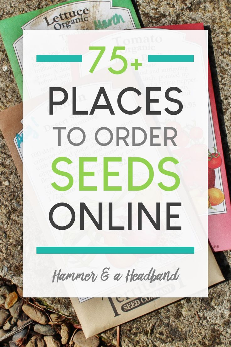 75+ Places to Order Plants and Vegetable Seeds Online in