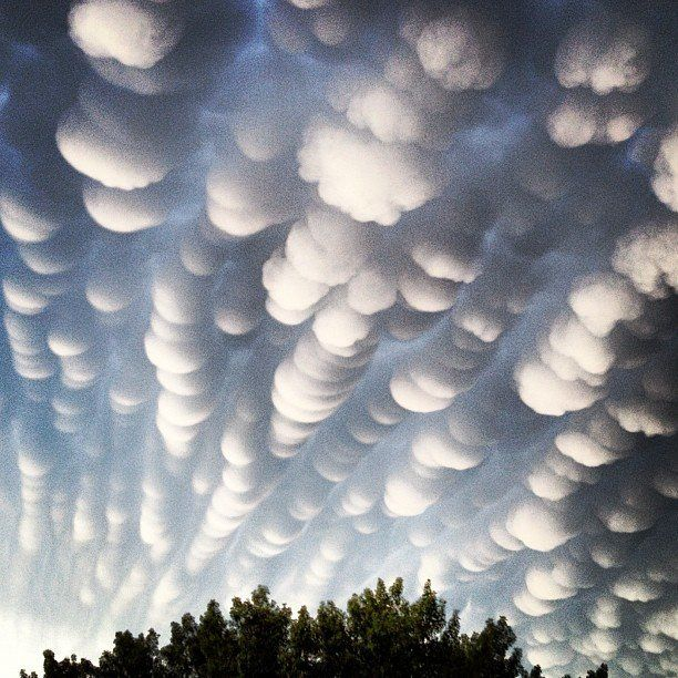A rare cloud formation called a mammatus, where clouds take on a  bubble-like shape, appeared in the skies above Regina, Saskatchewan in Canada following a thunderstorm on June 26 [2012 ?]