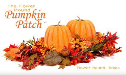 Flower Mound Pumpkin Patch, we must do a patch somewhere.