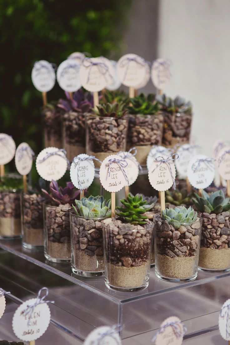 Succulent plant escort cards in petite glass jars filled with sand, soil and gravel, topped with escort cards for the wedding.