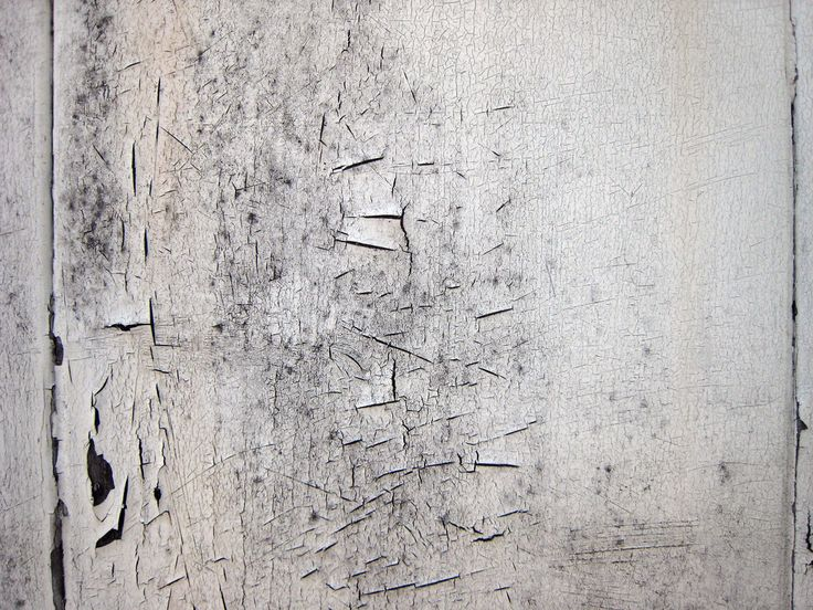 All sizes | Texture - cracked paint on wood | Flickr - Photo Sharing!