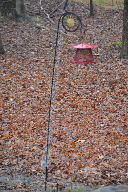 keep squirrels off squirrel feeder woodworking projects plans. Black Bedroom Furniture Sets. Home Design Ideas