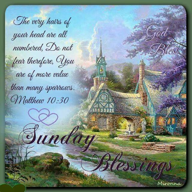 Sunday Morning Religious Quotes: 78+ Ideas About Good Morning Happy Sunday On Pinterest