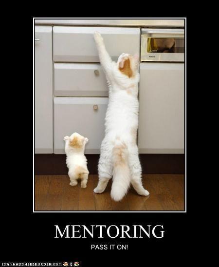 Image result for funny mentoring meme