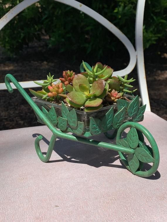 Leafy Miniature Wheelbarrow Planter Etsy In 2020 Wheelbarrow Planter Fairy Garden Small Succulents