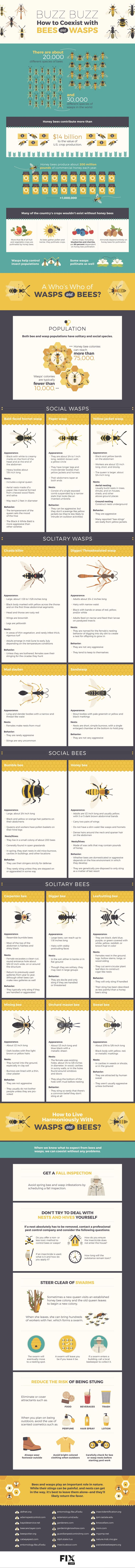 Bees and wasps are an essential part of our ecosystem, but their stinger has given them a bad reputation. Despite what you might think, many bees and wasps would prefer to avoid stinging you and are happy to left alone. Here are some ways which you can coexist with our buzzing friends.