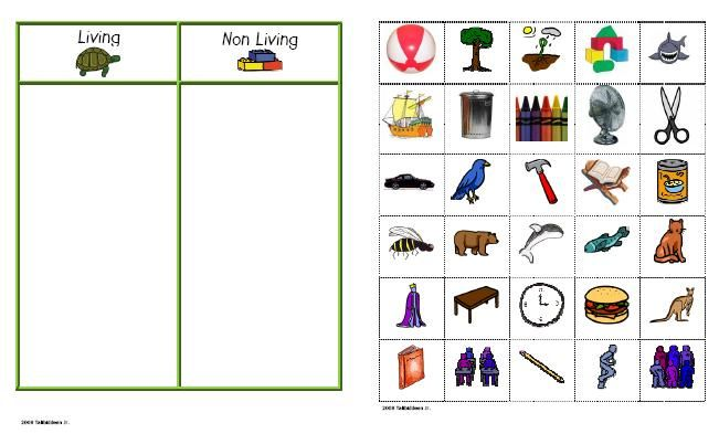 living and non living things- put magnets on the pictures and then kids can sort them on a cookie sheet