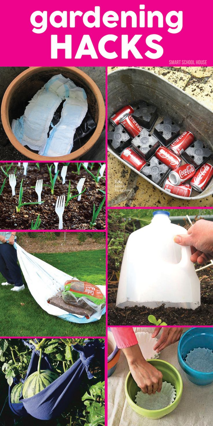 8 Genius Gardening Hacks. Get ready for spring with these gardening tips.