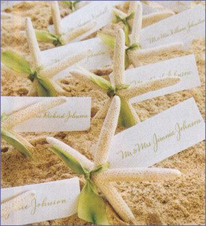Lot of 50 - Natural White Finger Starfish, Bulk Buy - Great for Wedding Crafts - Sailors - Shell Crafts Party Escort Cards