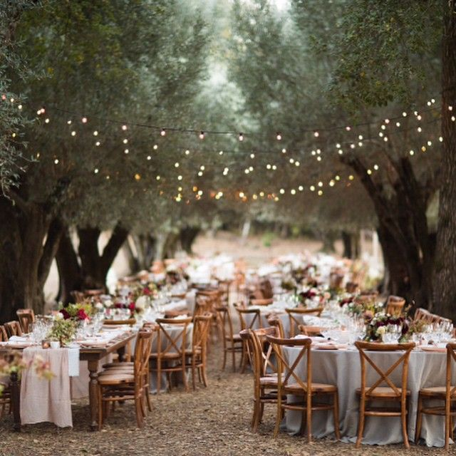 Dinner in a grove of old old olive trees is the stuff dreams are made of - from a wedding this last summer at a private estate in Glen Ellen with @lafleurweddings @abbyandlauren @theark_ @smallmasterpiece