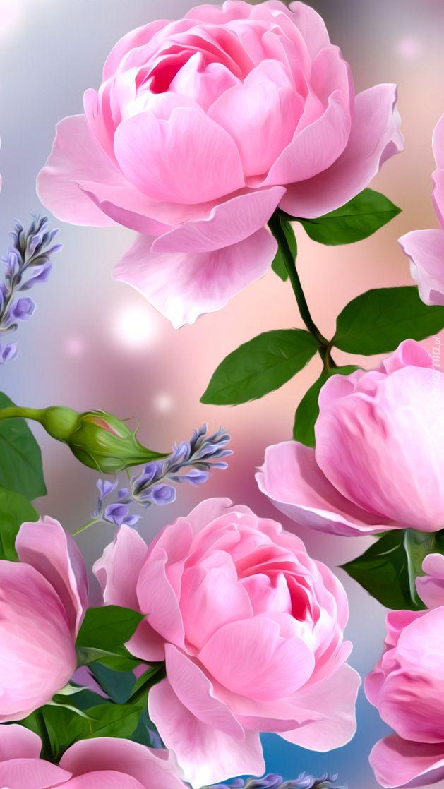Rozwiniete Rozowe Roze Tapeta Na Telefon Beautiful Rose Flowers Beautiful Flowers Felt Flowers Diy