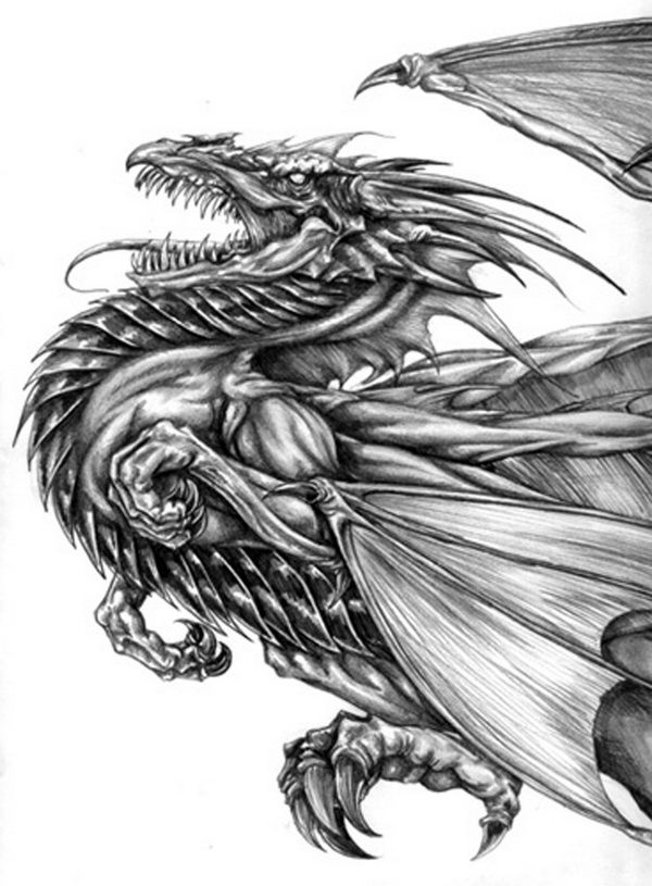 10 Cool Dragon Drawings for Inspiration, http://hative.com ...