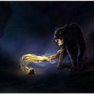 Black Panther Cat Wallpaper | black panther cat wallpaper