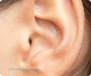 The eight best home remedies and holistic treatments to relieve tinnitus and ringing in the ears