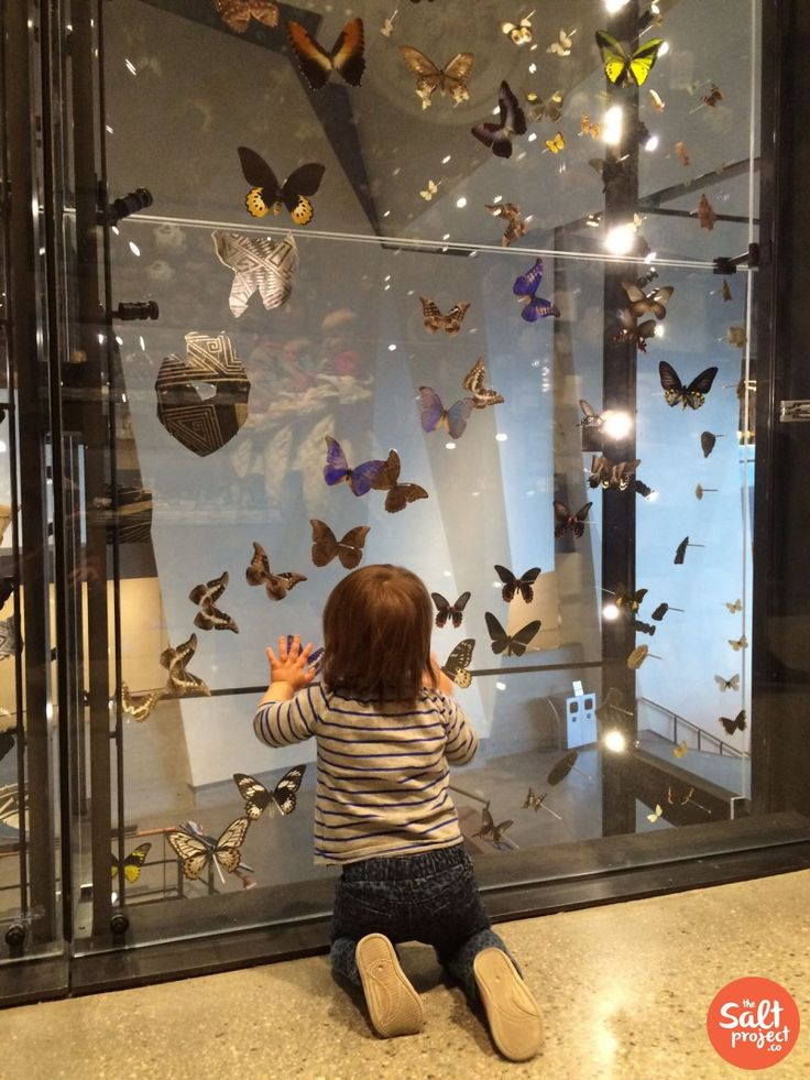 Natural History Museum of Utah | Salt Lake City | The Salt Project | Things to do in Utah with kids