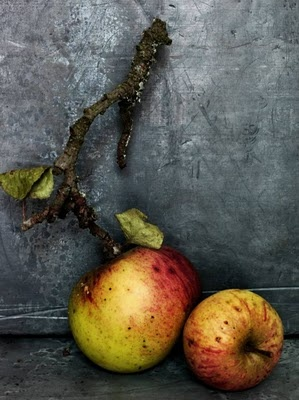a beautifully styled photo, great color! apples by photographer Simon Brown. via lorilangille.blogspot