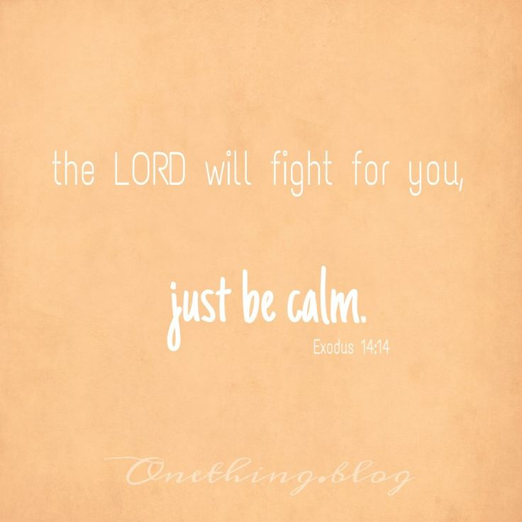 www.onething.blog * the LORD will fight for you, just be calm * be still * trust God * deliverance * Exodus 14:14 * God is fighting for us