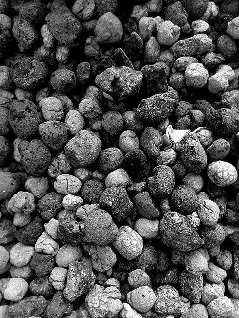 B&W - Shapes ( litlle stones)