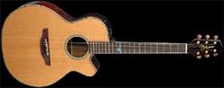 takamine guitar - limited edition