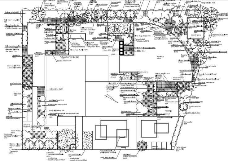 projekt ogrodu nowoczesnego