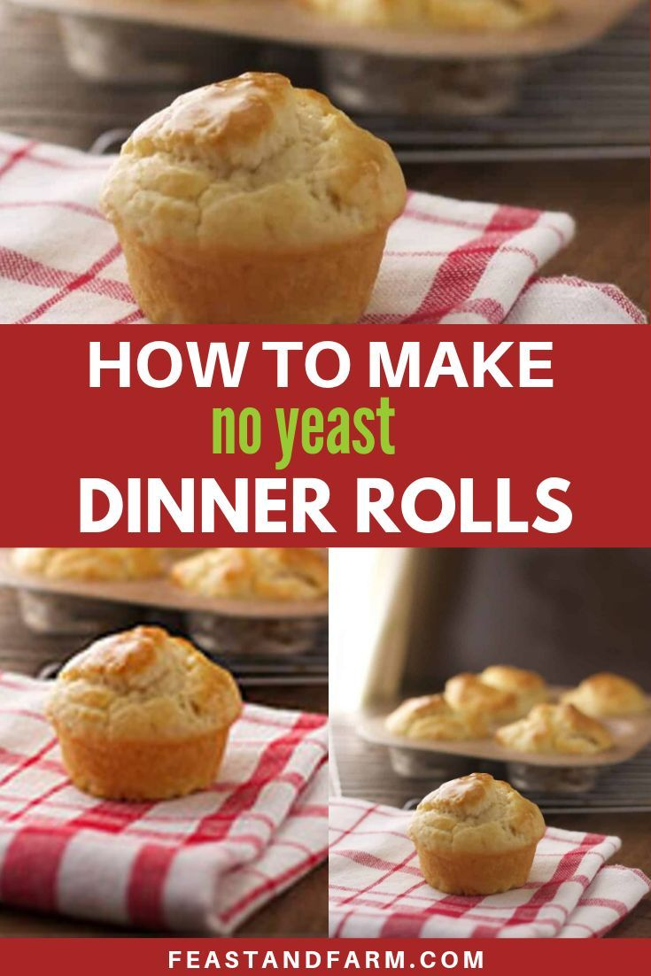 No Yeast Dinner Rolls Recipe Fun Baking Recipes Easy Homemade