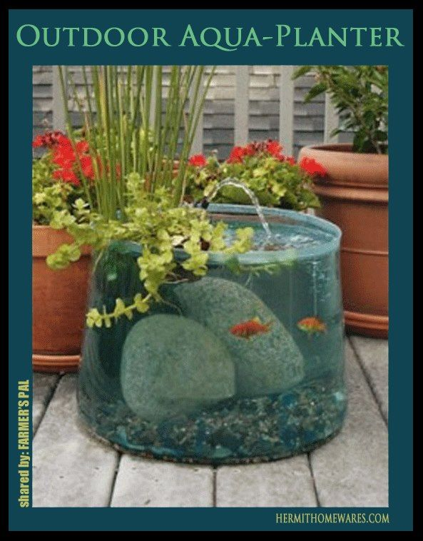 Beautiful planter/fountain/fish tank!  This would be awesome! No link on how to make, but I'm thinking plastic tub since glass might be too heavy? I want this!!! Taylor project!