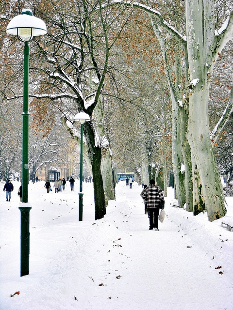 Szeged in the winter