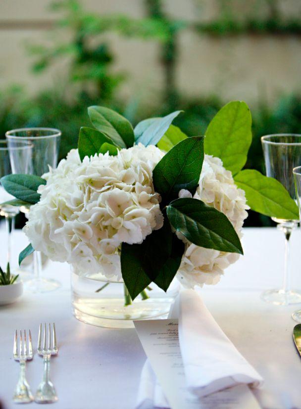 Best wedding greenery salal lemon leaf images on