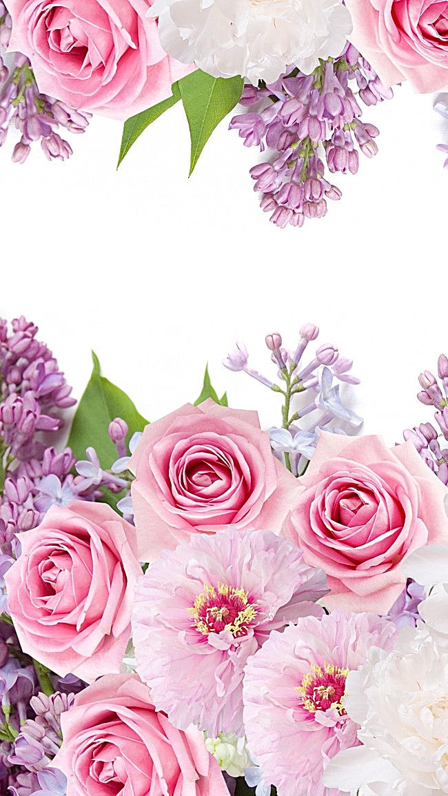 Pink And Purple Floral Background H5 Pink floral